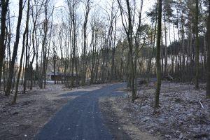 Miniatura zdjęcia: ścieżka rowerowa
