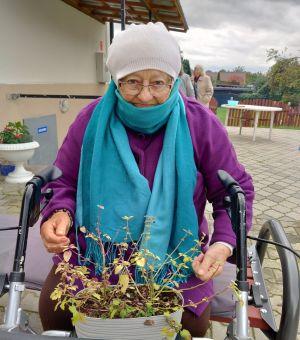 Miniatura zdjęcia: Starsza pani trzyma doniczkę